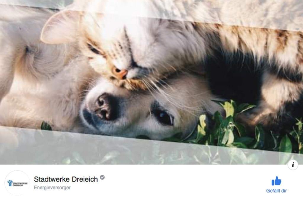 Stadtwerke Dreieich Facebook