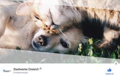 Stadtwerke Dreieich jetzt bei Facebook: I like!